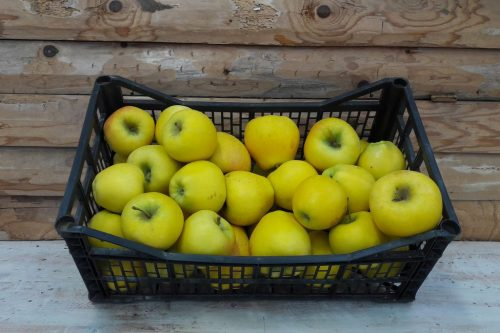 Pommes les serres à pépé